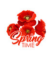 spring flowers poppy bunch greeting poster vector image