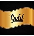 Gold background design vector image