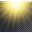 Sun rays effect vector image