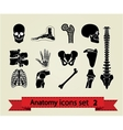 Anatomy icons set 2 vector image