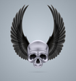 Metal chrome skull with two wings up vector image