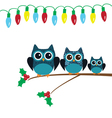 owl snow family lights vector image