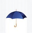 Umbrella icon with rain vector image vector image