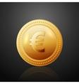 Coin euro vector image