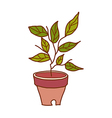 A view of flower pot vector image vector image