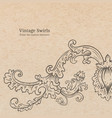 vintage old paper texture with detailed vector image