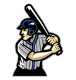 baseball player ready to hit the ball vector image