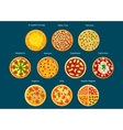 Italian pizza menu icon with different toppings vector image
