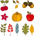 Design with autumn icons and objects vector image