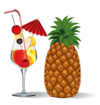 Tropical Drink vector image vector image