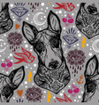flash bull terrier dog seamless pattern and eyes vector image