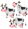 White spotted cow in three poses animals vector image