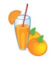 orange fruit juice vector image vector image