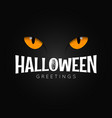 happy halloween night holiday background vector image