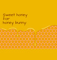 sweet honey for honey bunny vector image