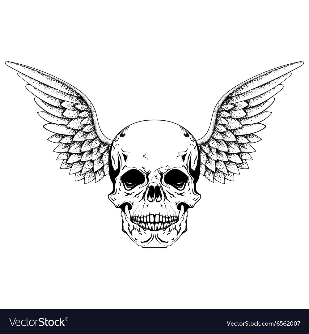Hand drawn sketch skull with wings tattoos line vector