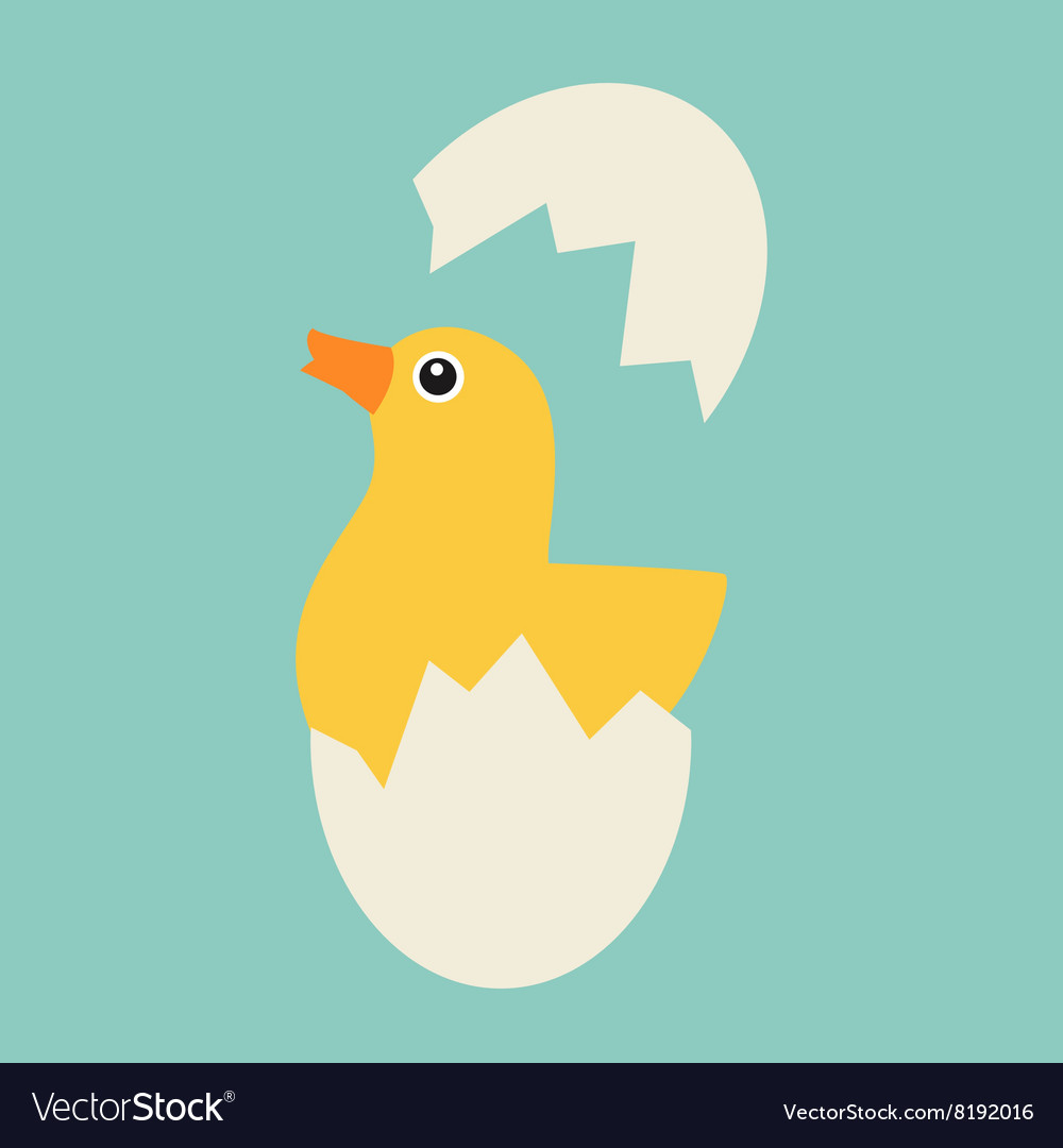Chicken hatches from the egg vector