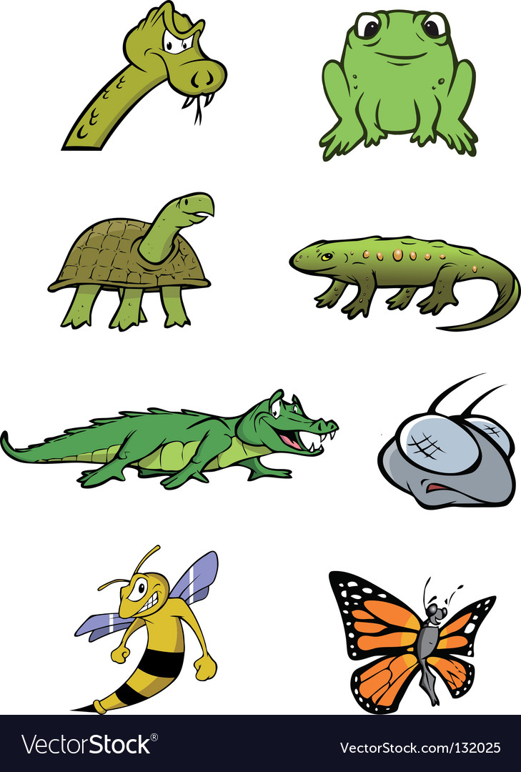 Reptiles insects collection vector