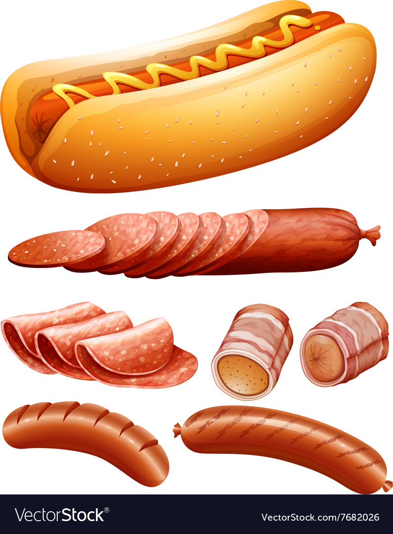 Different kind of meat and hotdog vector