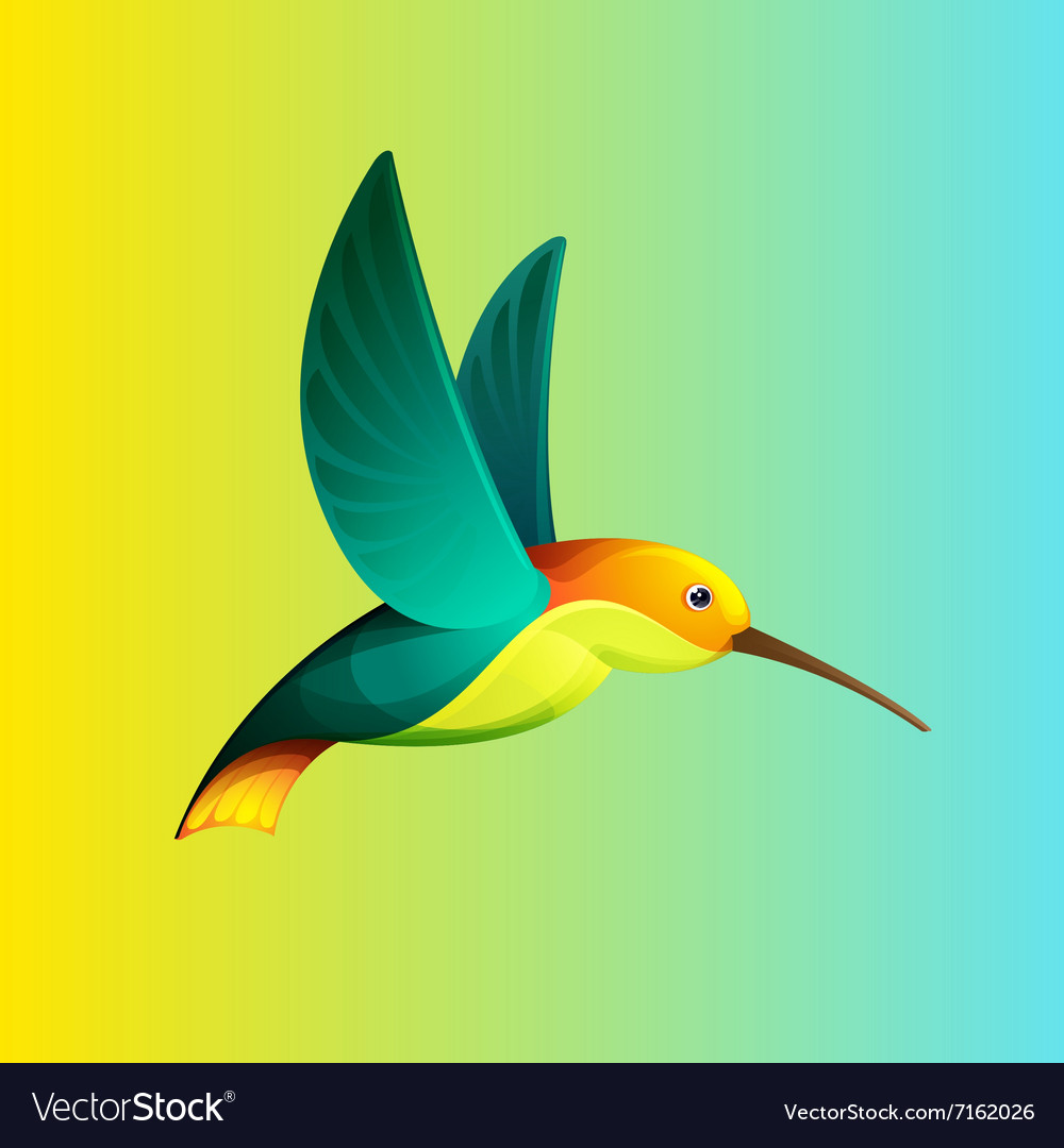 Hummingbird character for logo vector