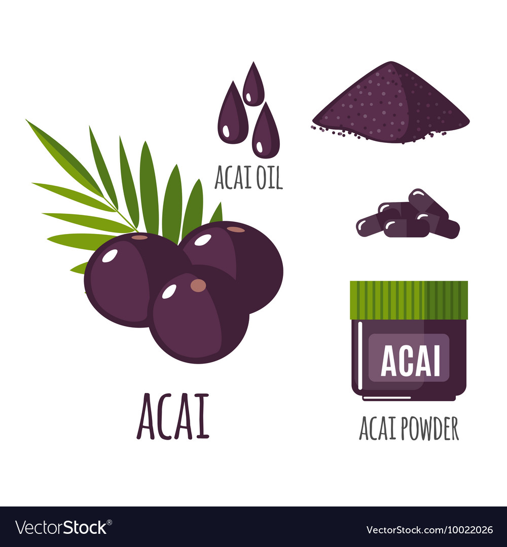 Superfood acai berry set in flat style vector