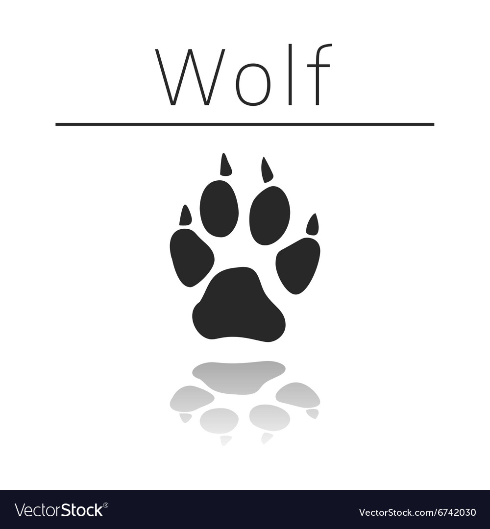 Wolf animal track vector