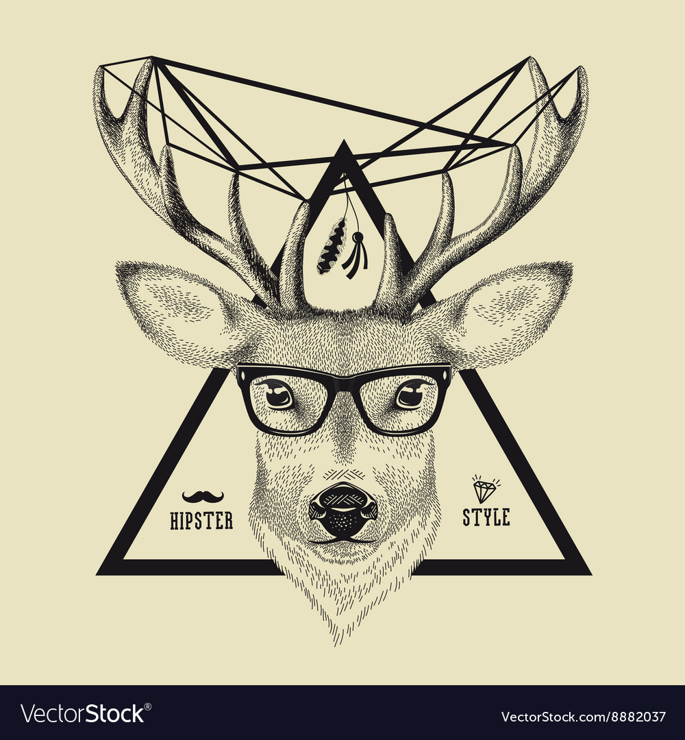 Hand drawn of a deer head in hipster style vector