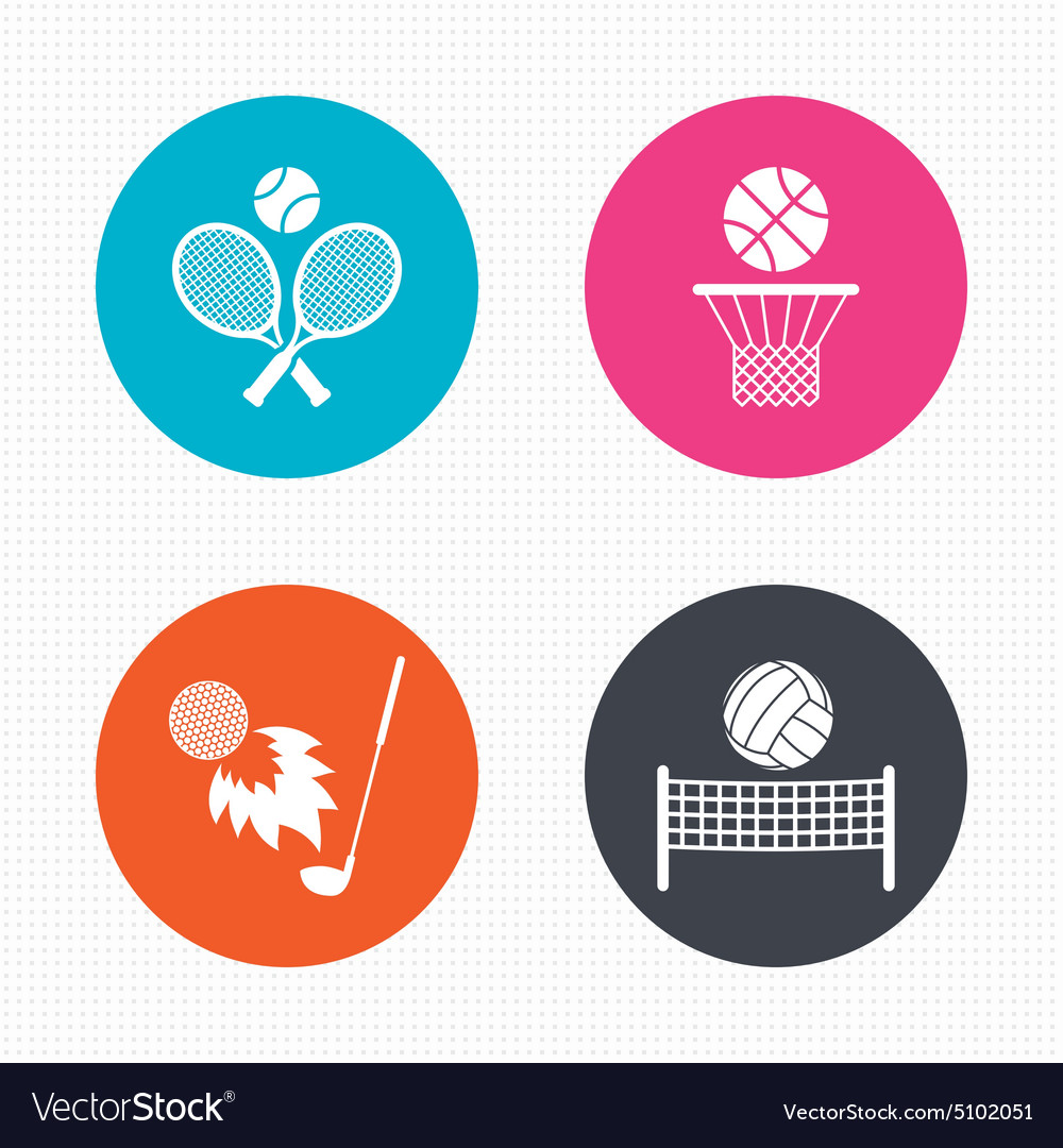 Tennis rackets with ball basketball basket vector