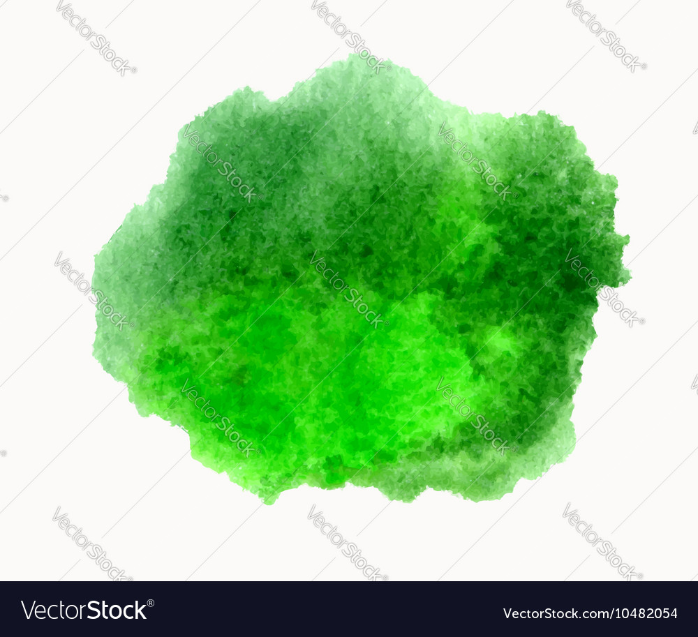 Green watercolor hand drawn stain isolated vector