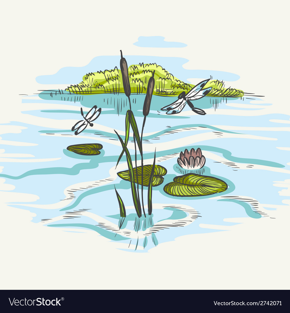 Natural background of green reeds vector