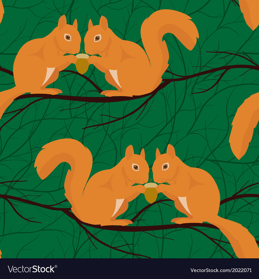 Seamless pattern with squirrels pairs vector
