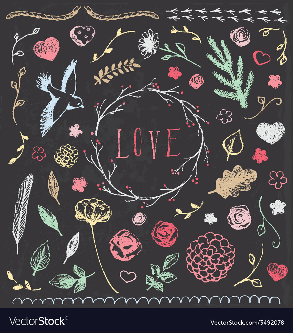 Hand drawn vintage chalkboard nature elements set vector