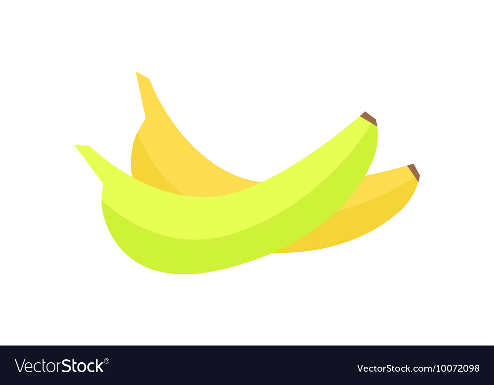 Bananas in flat style design vector