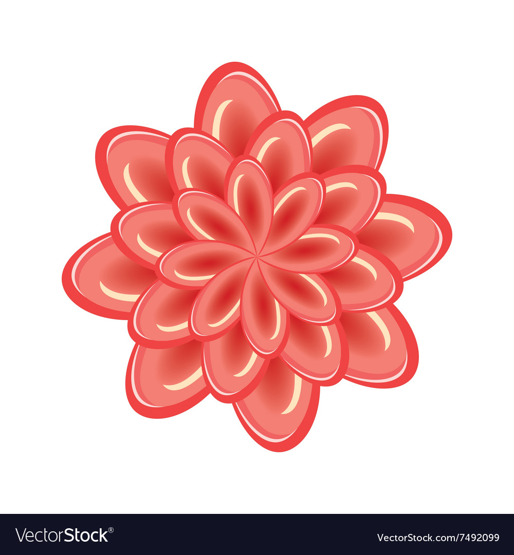 Flower icon unusual glass view chrysanthemum vector