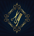 scissors and hairbrush for hairdressers vector image vector image