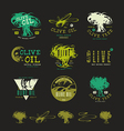 Set of label and badges for olive oil vector image