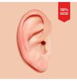 Realistic ear vector image