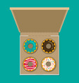 donut set in box modern flat style vector image