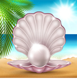 Pearl on the sand vector image