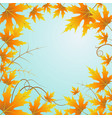background and leaves vector image