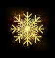 golden glitter gorgeous snowflake luxurious vector image