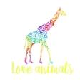 card with an african giraffe vector image
