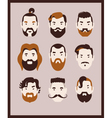 big beard kit vector image