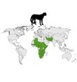 Cheetah distribution vector image vector image