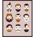 big beard kit vector image