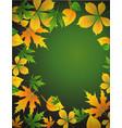 foliage vector image
