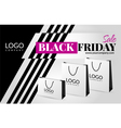 Black friday sale flyer vector image