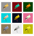 set of in flat style stork vector image