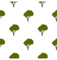 Tree with fluffy crown pattern flat vector image