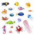 cartoon colorful sea life set vector image